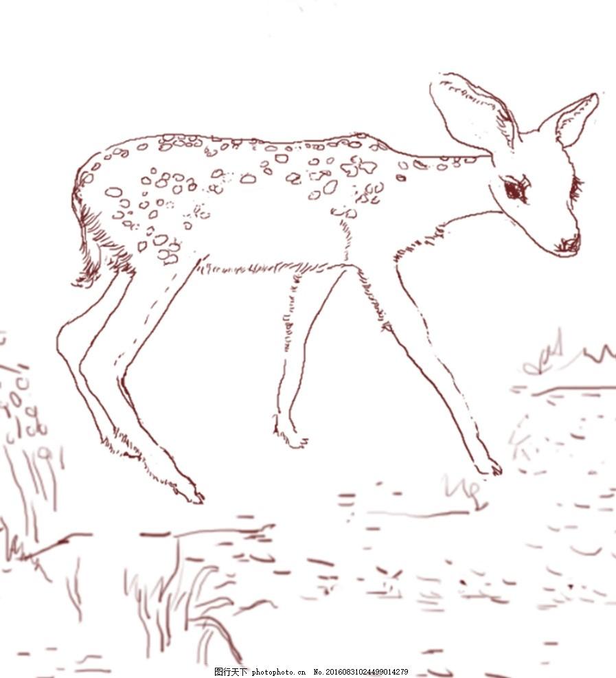 小鹿图片简笔画