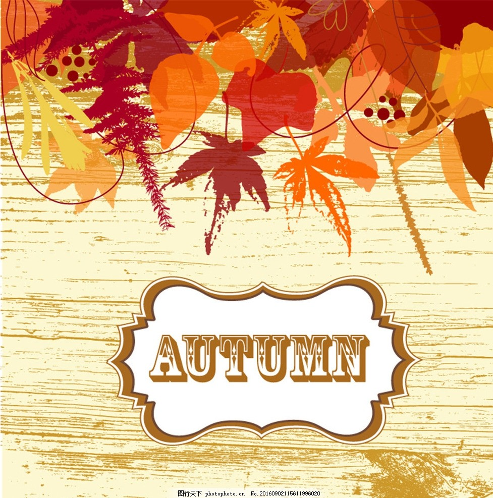 秋季枫叶木纹背景矢量素材