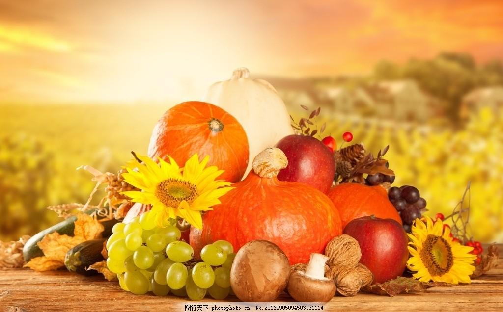 秋季幼儿园开学主题墙立体葡萄