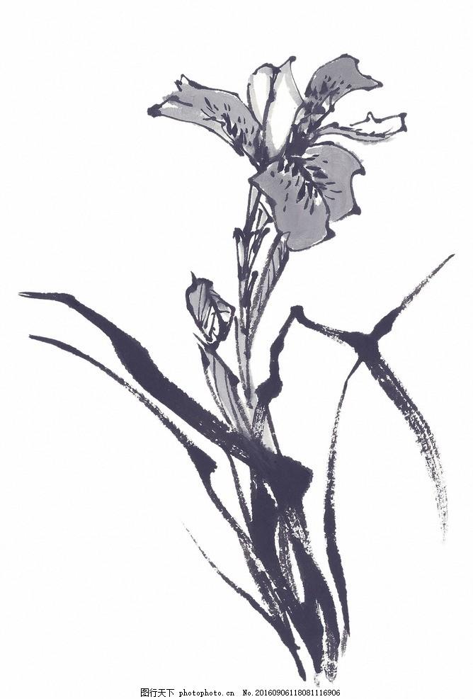 兰花 花卉 菊花 国画 山水画 水墨画 插花 插画 中国风 展板