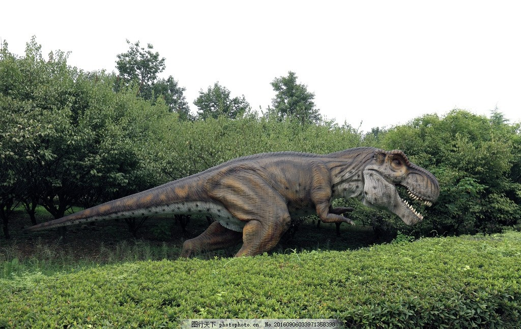 霸王龙 恐龙公园 动物 雕塑 假恐龙 雕像 摄影 国内旅游
