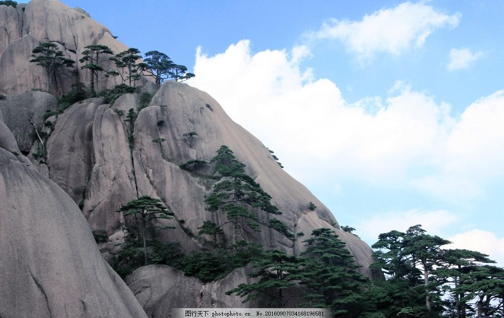 黄山美景 黄山风景 山石 自然风光 大自然 护眼 树木 松树 蓝天 白云
