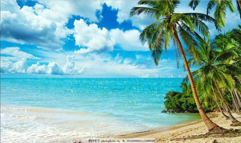 沙滩椰树海景图 沙滩椰树 海景图 沙滩 海景 椰树 海边 蓝天白云 大海