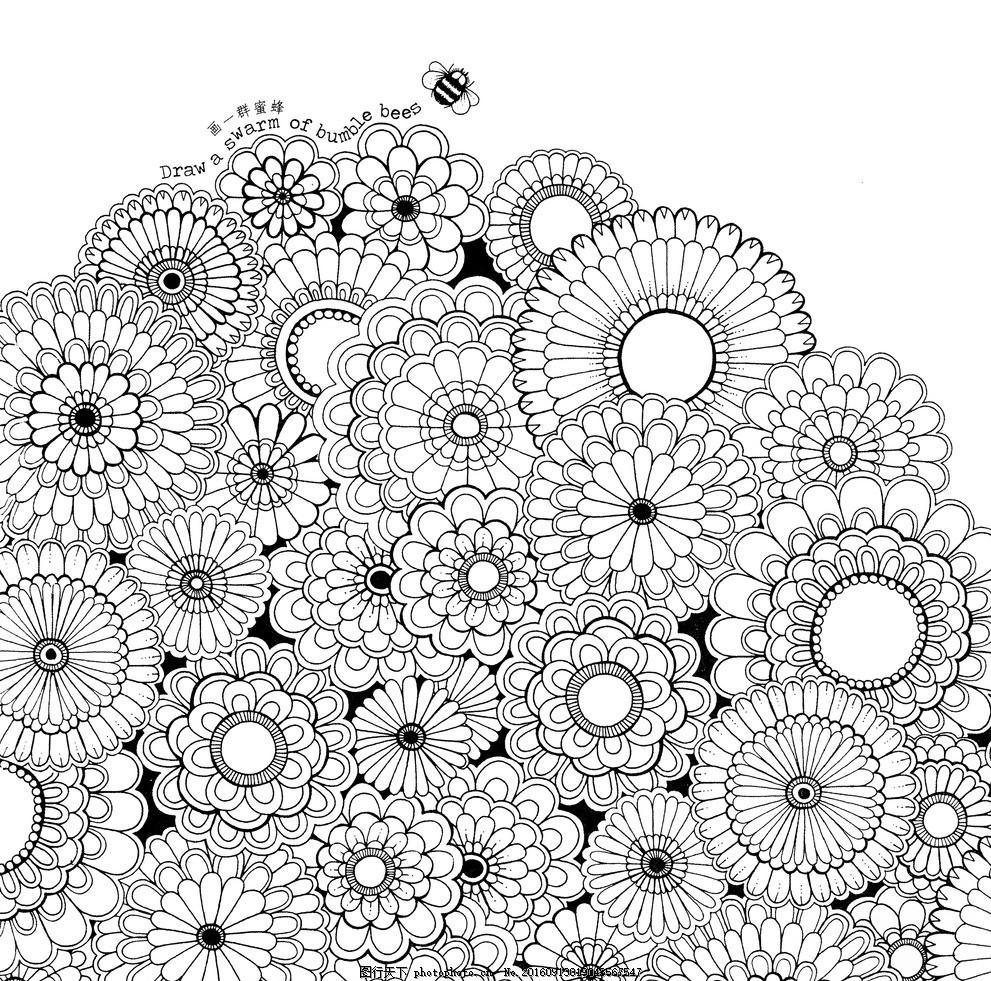 秘密花园 线稿 黑白 花卉 手绘
