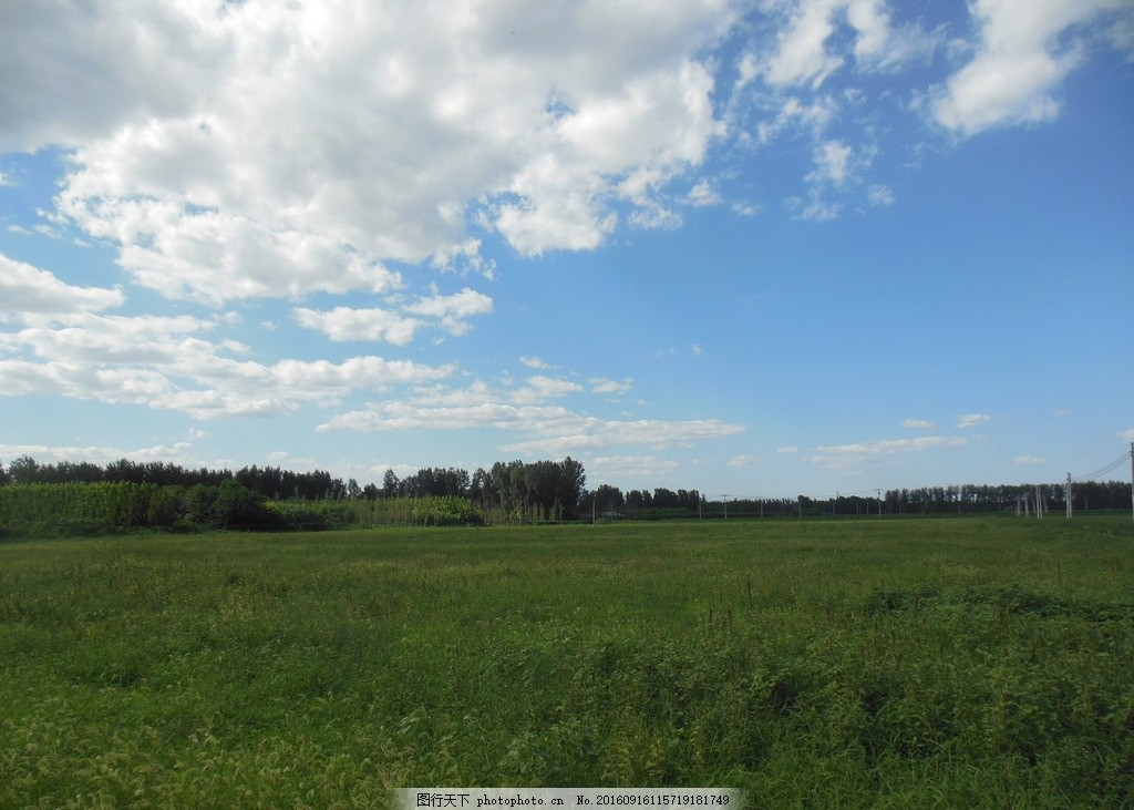 草地风景 草地 草场 绿草 天空 蓝天 白云 空旷 原野 风景图 风景图