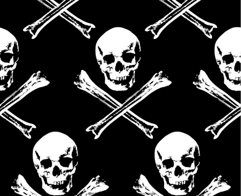 现代装饰画 骷髅头 死亡 死人 亡灵 头骨 海盗 黑白 现代装饰 设计