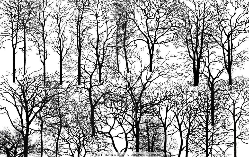枯树剪影 多款枯树 贴图
