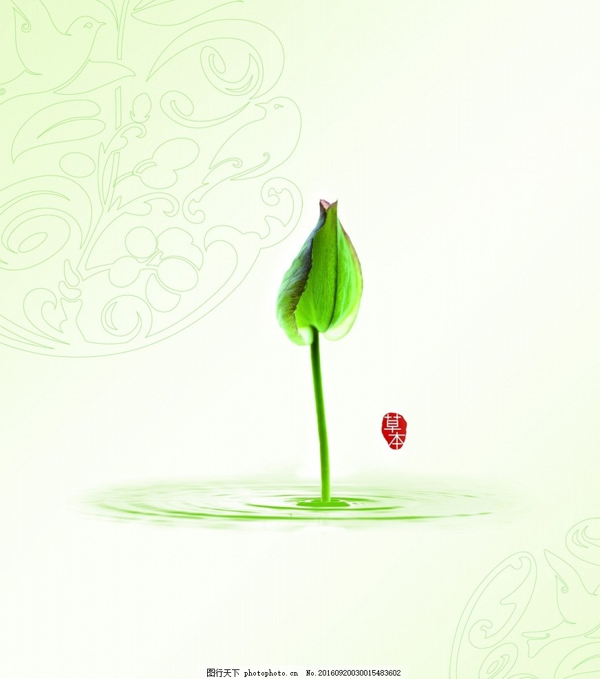 男士 李冰冰 面膜季 水能量 草本护肤 水嫩精纯 水嫩莹透 海报 pop图片