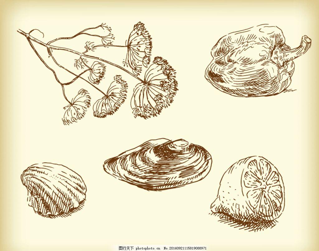 韭菜花 青椒 柠檬 贝壳 手绘素材 抽象设计 时尚 矢量素材 素描