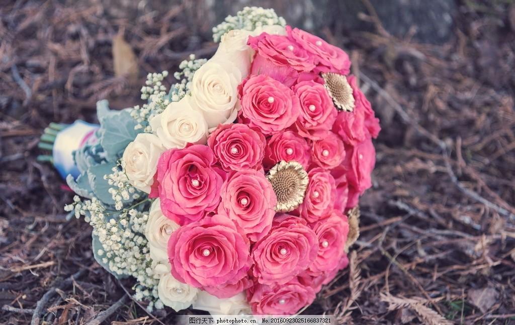 玫瑰花 粉玫瑰 捧花 花束 手捧花 鲜花 花朵 花卉 植物 摄影