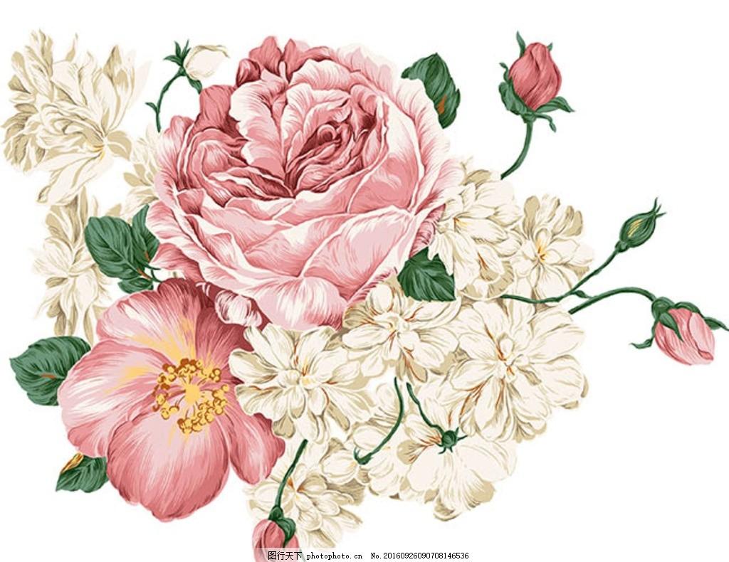 牡丹 工笔画 花朵插画 插画设计 工笔画花朵 牡丹花 手绘插画