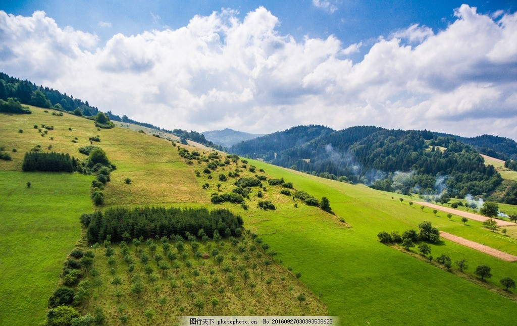 高山草地 蓝天 白云 绿草 树木 摄影 自然景观 自然风景