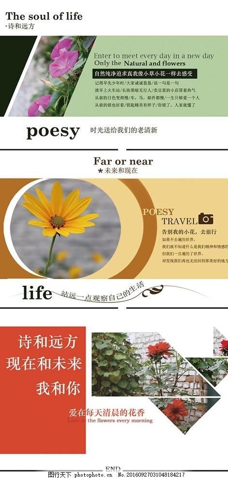 花朵和板式设计 花朵 植物 板式设计 色彩搭配 书籍排版 网页排版 小