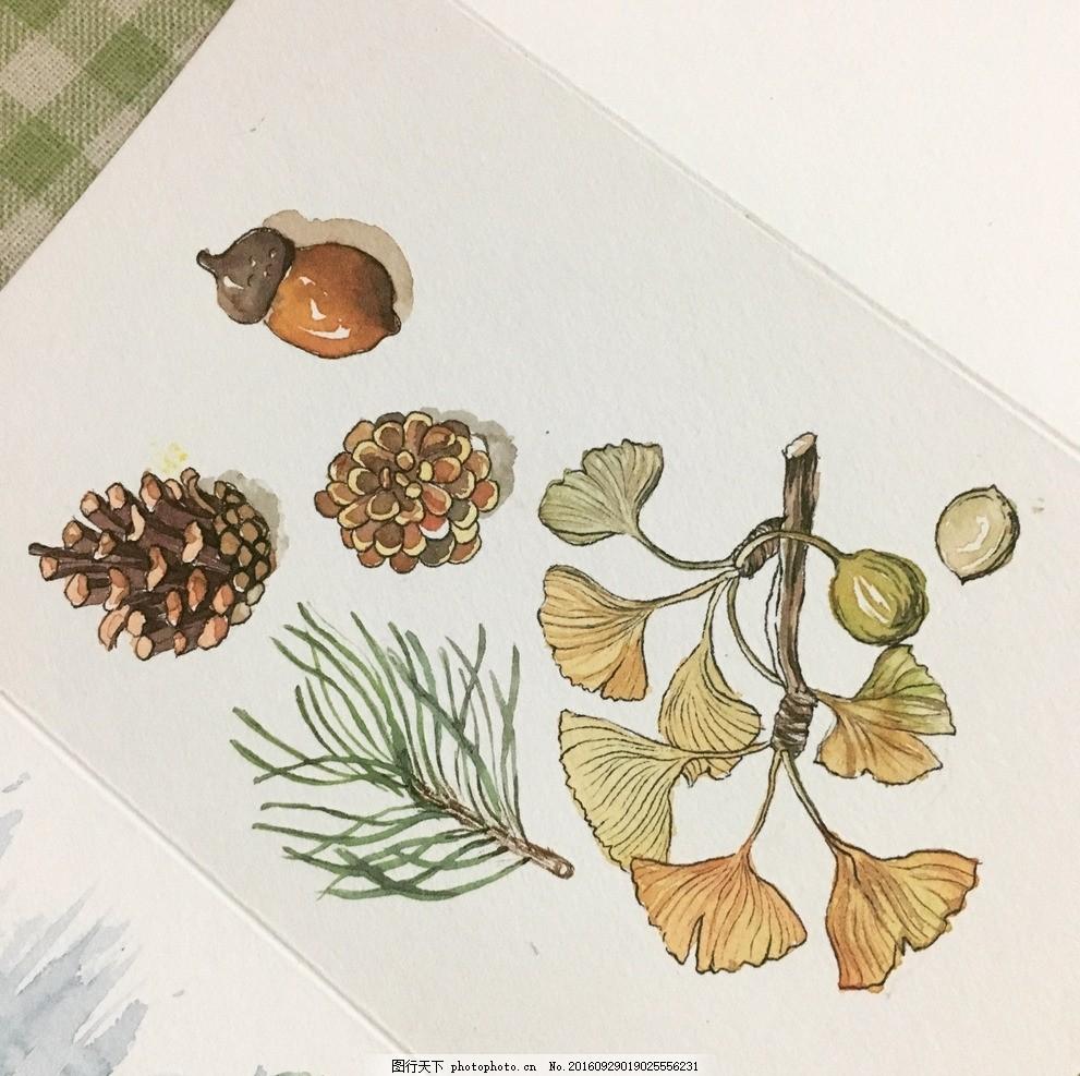 水彩手绘植物