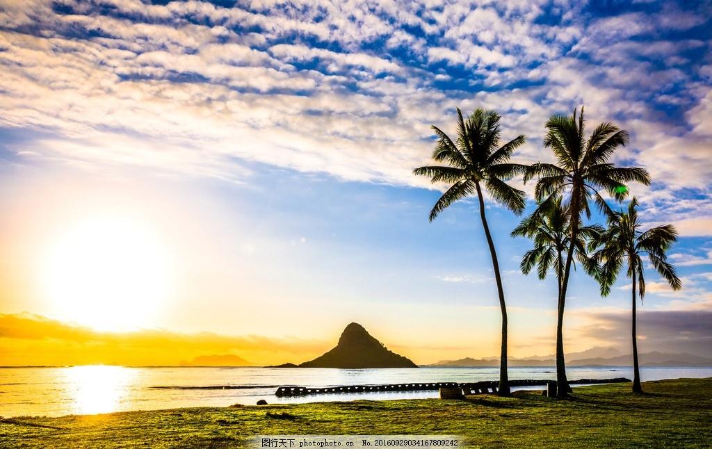 海边风景 海边夕阳 棕树 夕阳 朝阳 海边 大海 海洋 海岛 蓝天白云