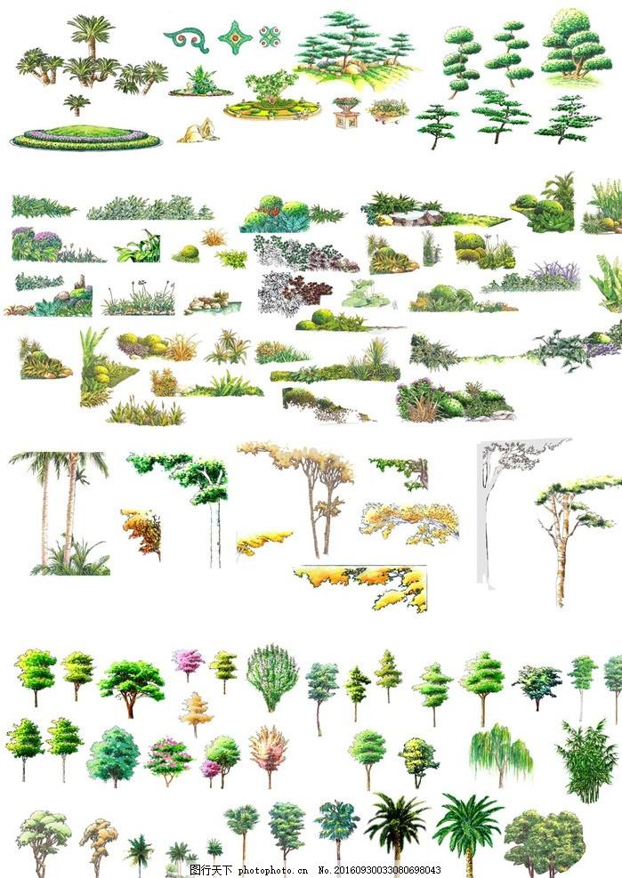 园林绿化树木立面图