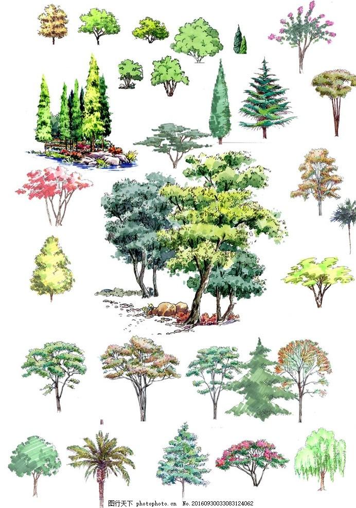 园林景观绿化效果立面图 手绘 树木 效果图 水彩 乔木 高清 色叶树