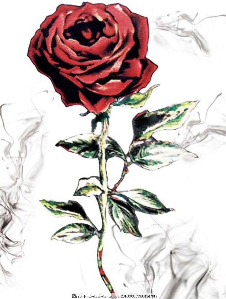 玫瑰花 油画 手绘 卡通