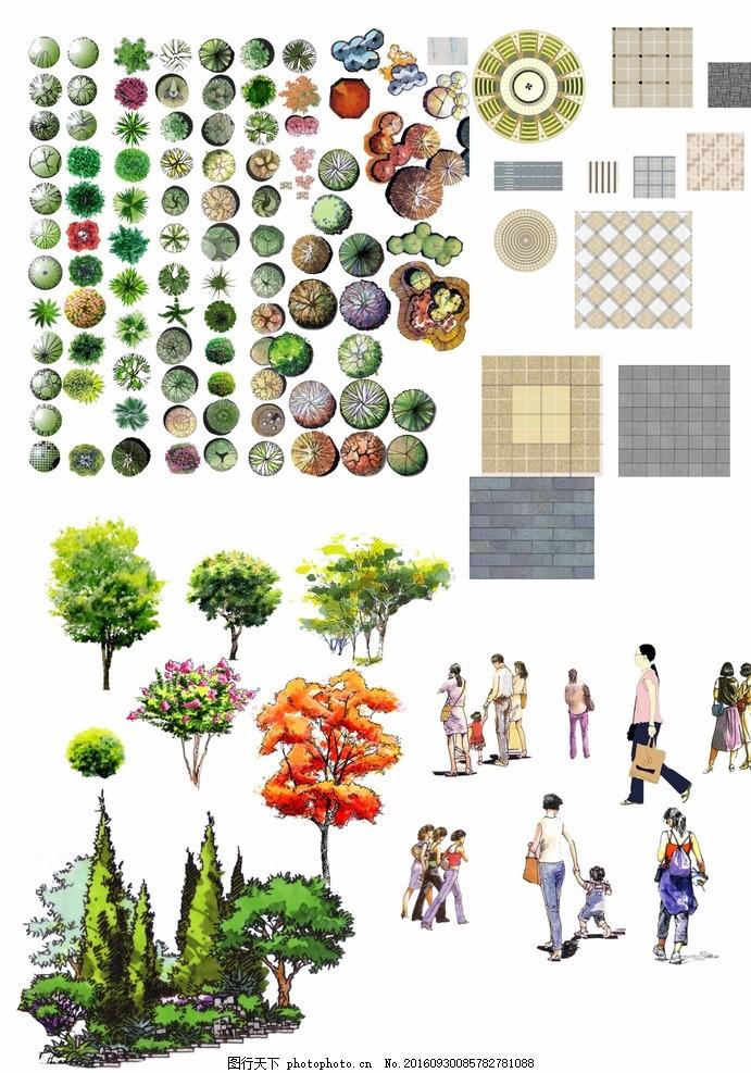 手绘 园林 景观设计 绿化 树木 平面效果图 立面效果图 素材 乔木